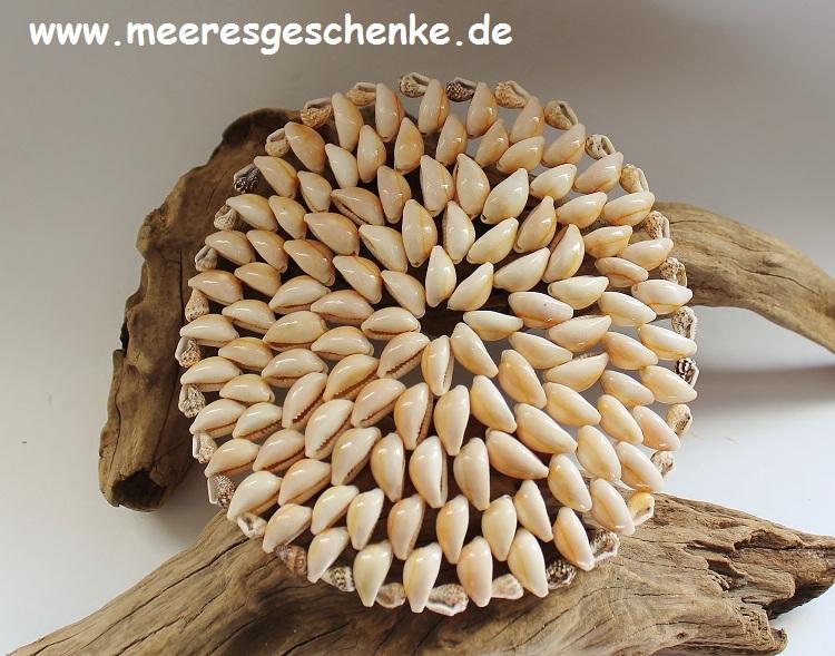 Muschel untersetzer maritime deko online bei - Muschel dekoration ...